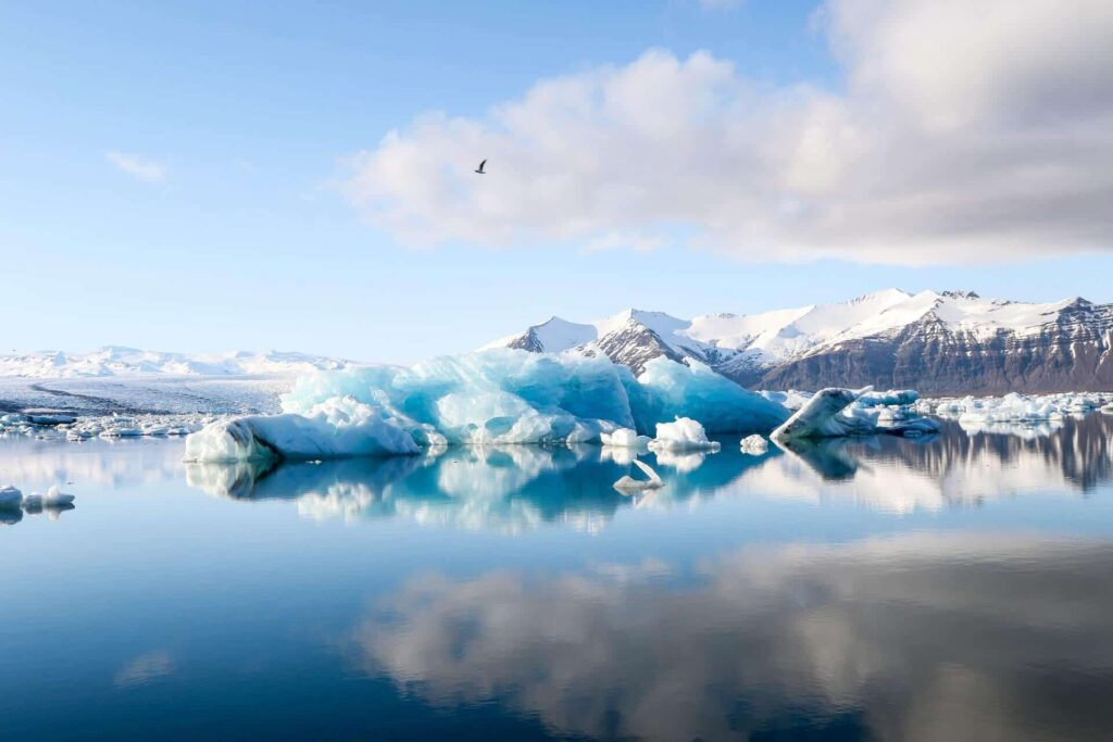Jokulsarlon - Glacier Lagoon